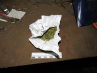 В Мордовии полицейские и общественники провели мероприятия по профилактике наркомании
